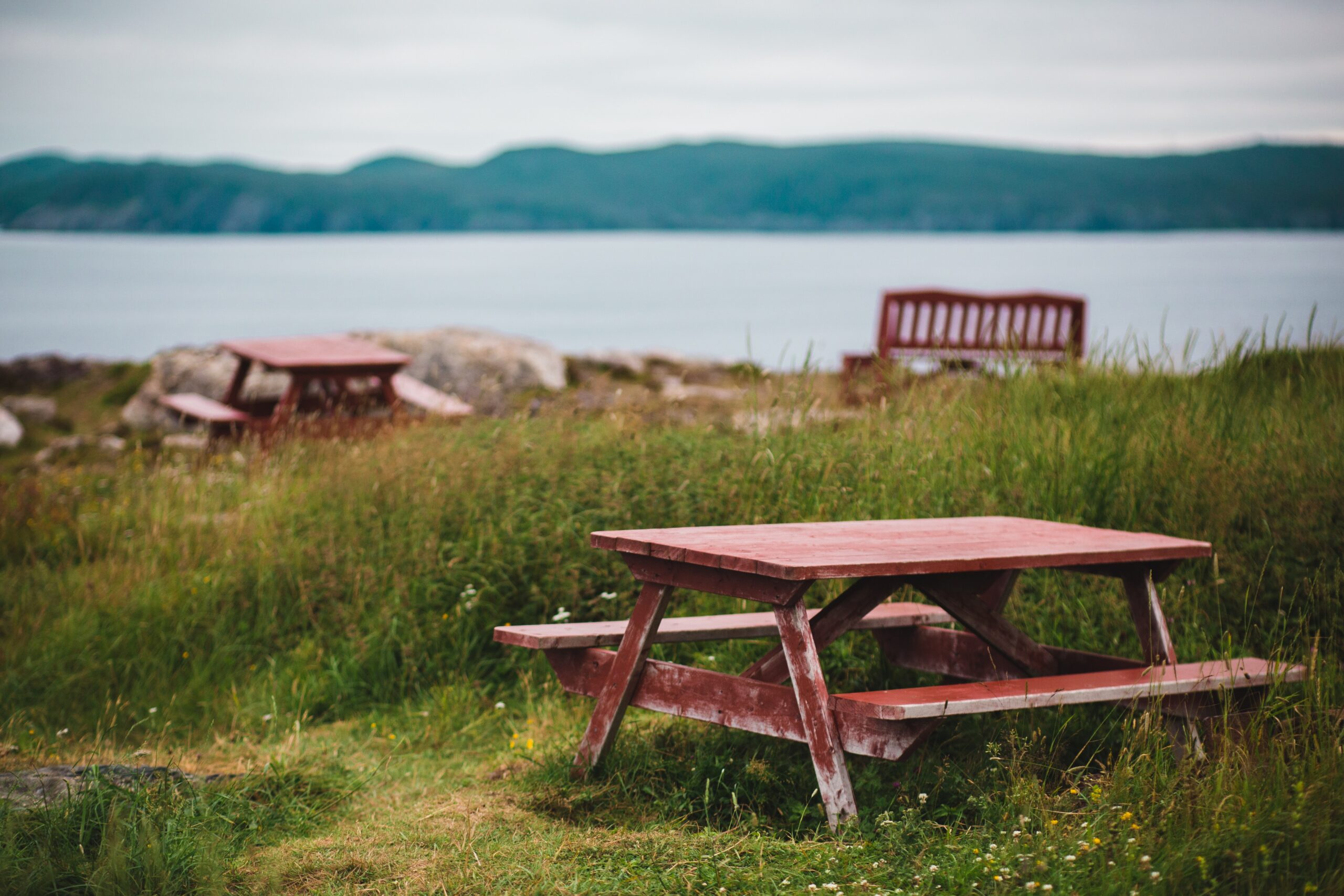 a park picnic bench overlooking some water.