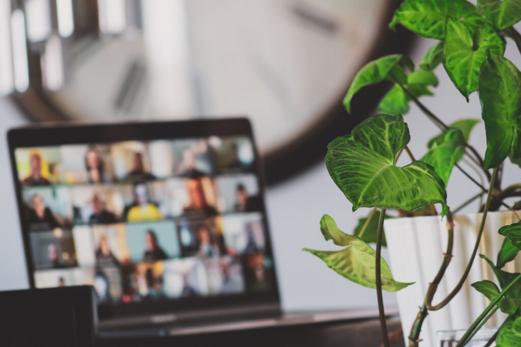 portable monitor blurred in background next to house plant