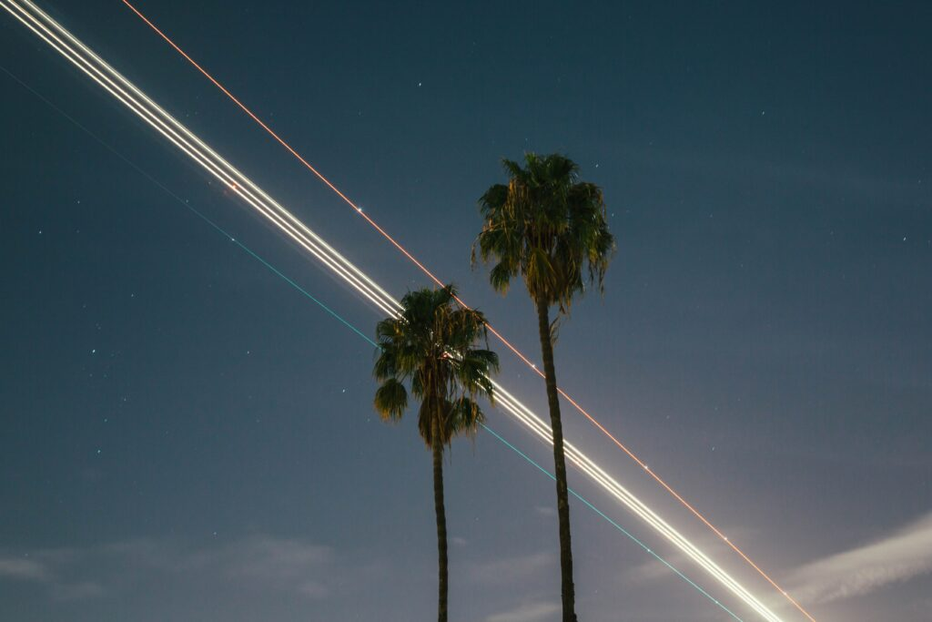 Lights that are streaking across the night sky behind palm trees